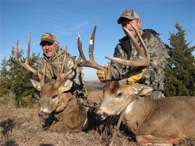 Hunt Bobcat Coyote And Elk At Buster S Outfitters In Sun